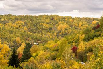 Autumn landscape, autumn forest.