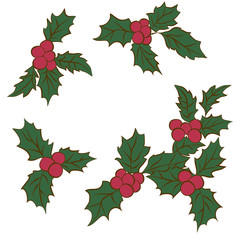 set of Christmas holly leaves.Branch Of Green Leaves and Red Berries.