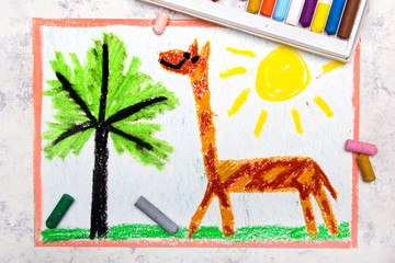 Colorful hand drawing: cute smiling giraffe with long neck