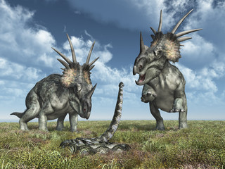 Dinosaurier Styracosaurus und Riesenschlange Titanoboa