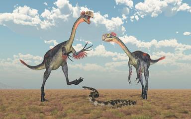 Dinosaurier Gigantoraptor und Titanoboa