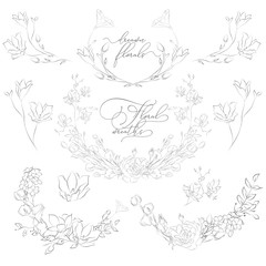 Vector Drawn Plants and Flowers, Wreaths, Corners, Branches