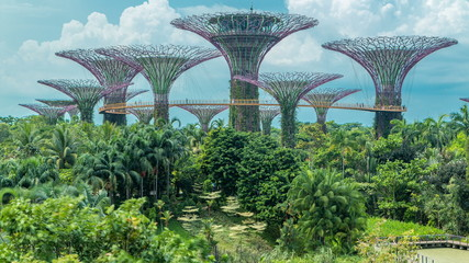 Aluminium Prints Singapore Supertrees at Gardens by the Bay .