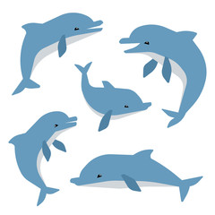 Cute dolphins in different poses vector illustation. Dolphins isolated on white background. Animal mammal dolphin, sea wildlife