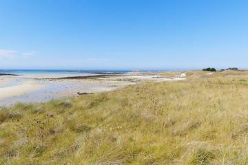 Meadow meets beach