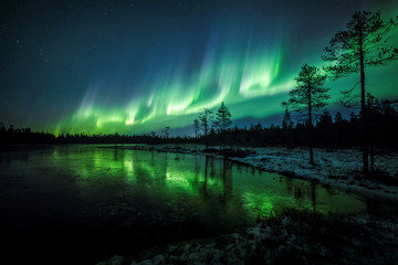 The Aurora Borealis (Northern Lights) is seen over the sky near Rovaniemi in Lapland