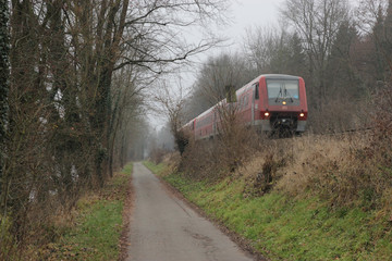 Train and railway in forest of Ulm, Germany