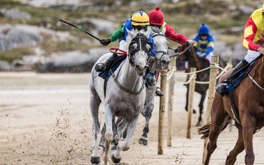 Race horses and jockeys  galloping at speed on the beach