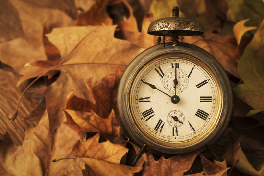closeup of an old and rusty alarm clock surrounded by dry leaves, depicting the end of the summer time and the beginning of autumn