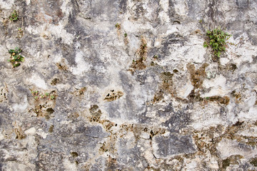 Old grey concrete wall. Texture. Background. Montenegro.