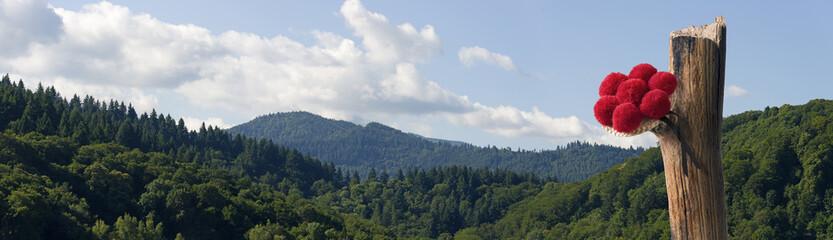 Schwarzwälder Bollenhut