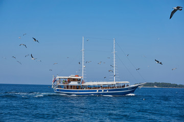 Excursion boat in the blue Adriatic Sea, circled by many seagulls, on a bright summer day with cloudless sky