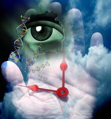 Human Genetic DNA