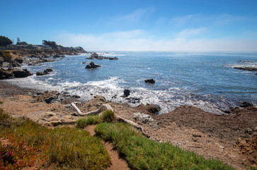 Driftwood log on rugged Central California coastline at Cambria California United States