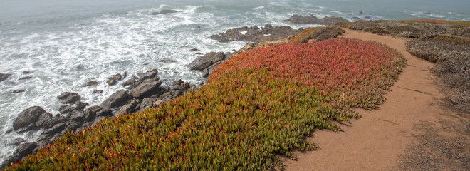 Coastal hiking path on rugged rocky Central California coastline at Cambria California United States