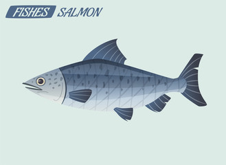 Fish character. Cartoon vector illustration