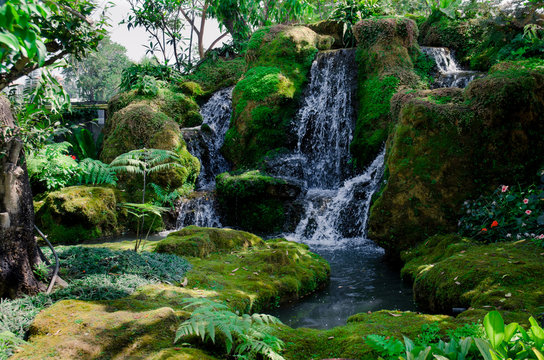 green forest and waterfall