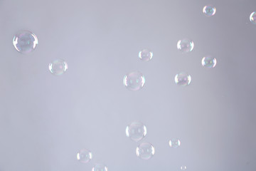 Beautiful translucent soap bubbles on grey background