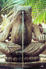 Fontaine grenouille