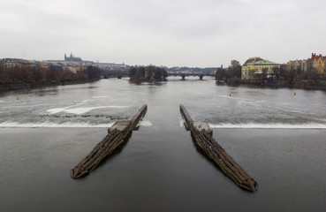 Seagull birds sitting on wooden barriers on the river Vltava in Prague