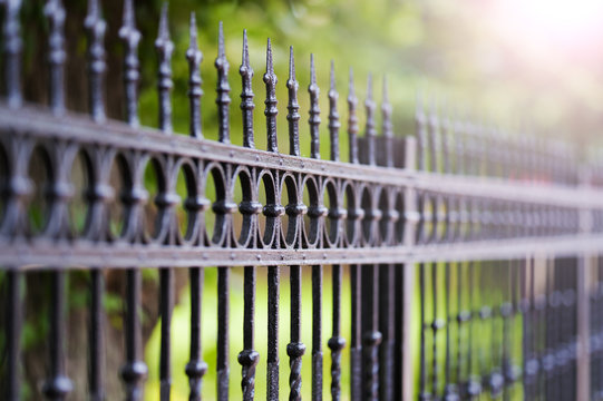 Metal black fence with gold elements