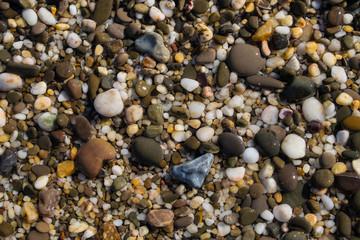 Background texture of wet beautiful sea stones