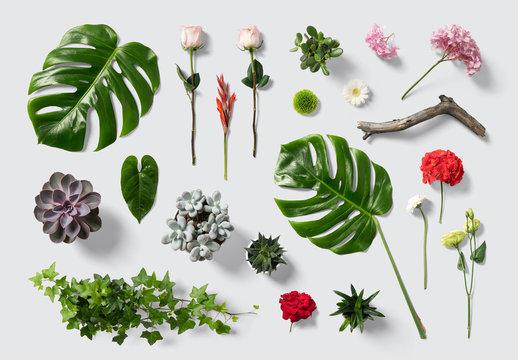 Kit de scènes florales et végétales