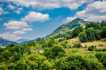Paysage du Cantal