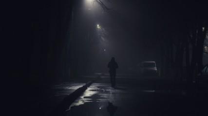 light on the night street