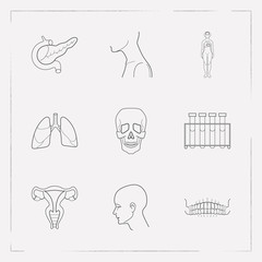 Set of medicine icons line style symbols with woman body, uterus, lung and other icons for your web mobile app logo design.