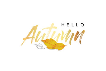 Hello Autumn, gold text handwritten calligraphy. Set of autumn leaves. Modern lettering vector illustration on the textured background as poster, postcard, card, invitation template. Concept seasons