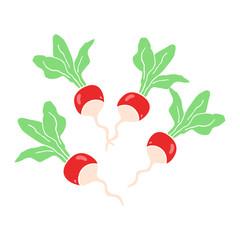 flat color illustration of a cartoon radishs