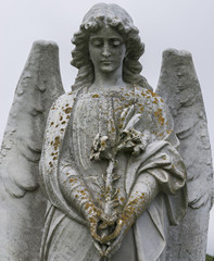 Fototapete - Angel with lily (statue)