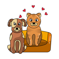 dog and cat pet animals friendly love