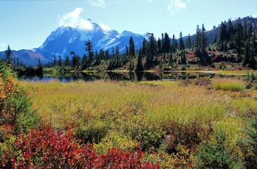 Amazing view of Mount Shuksan and vibrant colors around Picture Lake in the North Cascade mountains