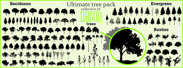 Ultimate tree collection, 150 detailed, different tree vectors  Fototapete