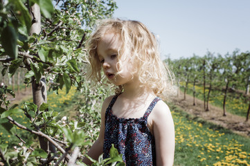 Girl looking at plants growing on field during sunny day