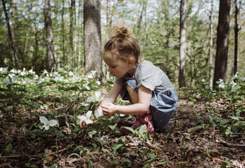 Side view of girl picking white flowers from field while crouching in forest