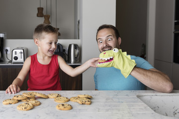Playful son feeding chocolate chip cookie to glove puppet worn by father at home