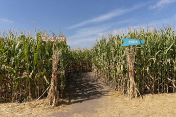 Corn Maze Entrance with Signs