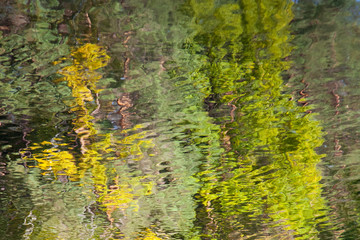 Abstract background: reflection of the deciduous forest in the water. Autumn leaves reflecting in a pond