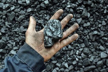 Coal in the hand of worker miner