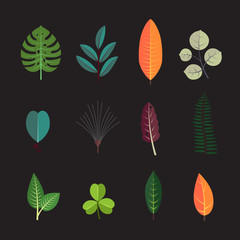 Exotic tropical leaf icons set. Forest tree leaves collection.
