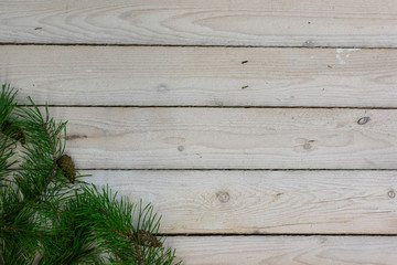Greenery and pine cones on the lower left corner on a background of whitewashed boards
