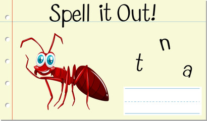 Spell english word ant