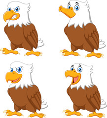 Cartoon eagles collection set