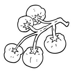 line drawing cartoon tomatoes on vine