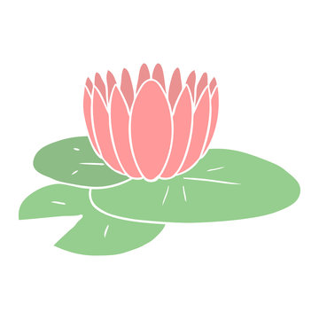 flat color style cartoon water lily