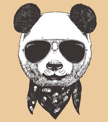 Portrait of Panda with sunglasses and scarf, hand-drawn illustration, vector