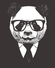 Portrait of Panda in suit, hand-drawn illustration, vector